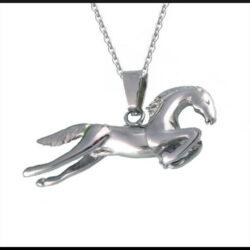 Stål halsband häst
