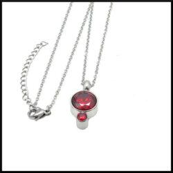 Halsband i stål med röda stenar