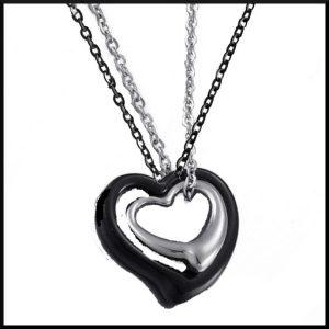 Halsband Dubbel Hjärta i stål